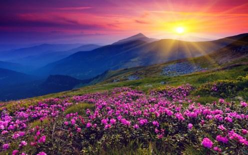 sun-shining-over-hills-1920x1200-wallpaper-amanecer-en-las-colinas-y-montac3b1as
